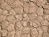 Dried Mud Polygons<br /> Racetrack Playa<br /> April 29, 2006 <br /> The top layer of finest clays have flaked on drying and been largely removed by the wind.
