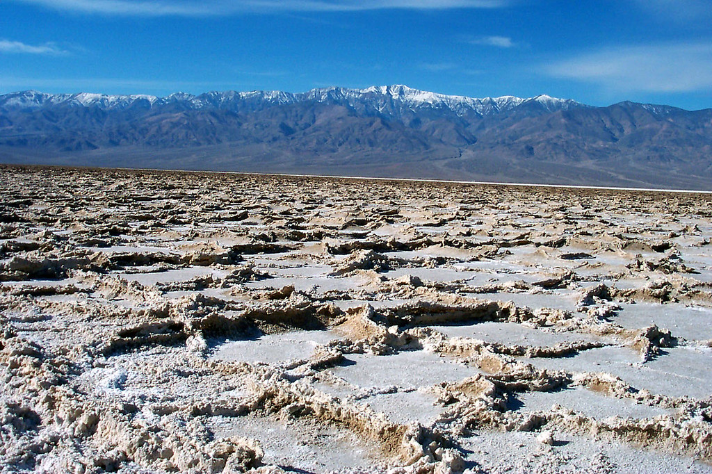 Salt formations, some of these were a foot high.