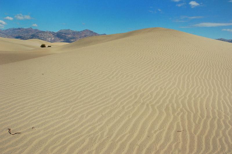 One last dune photo.