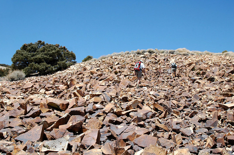 Climbing the rocks to get up on the ridge.