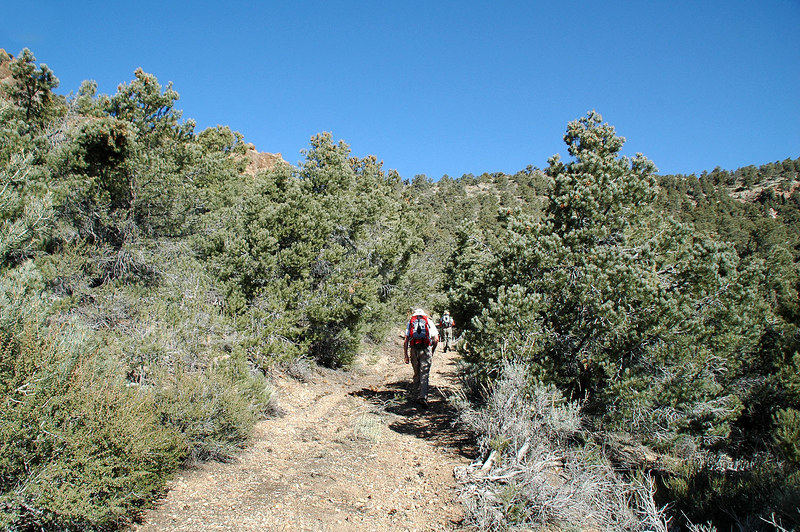 Hiking up the road to the saddle.