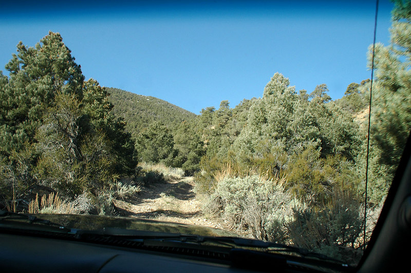 Driving up Phinney Canyon with John & Sooz. Plan to drive to a saddle where we will start up a ridge that will lead us to Grapevine Peak.