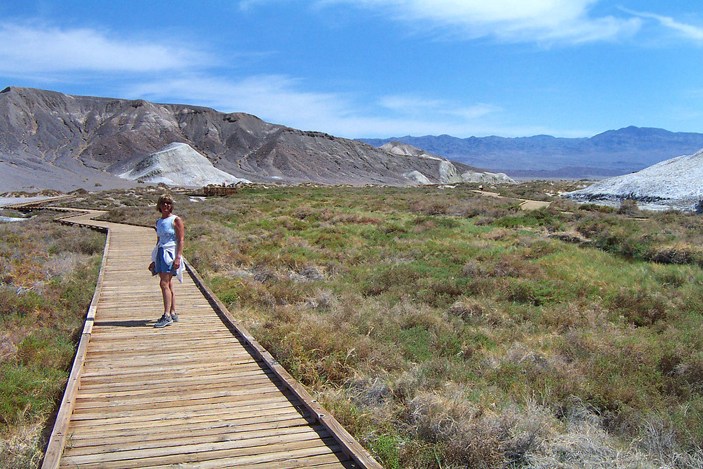On the way home, Sooz and I stopped at Salt Creek to check out the Pupfish.
