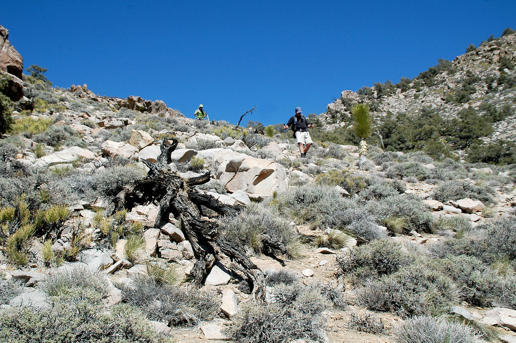 Almost back to the old mine trail.