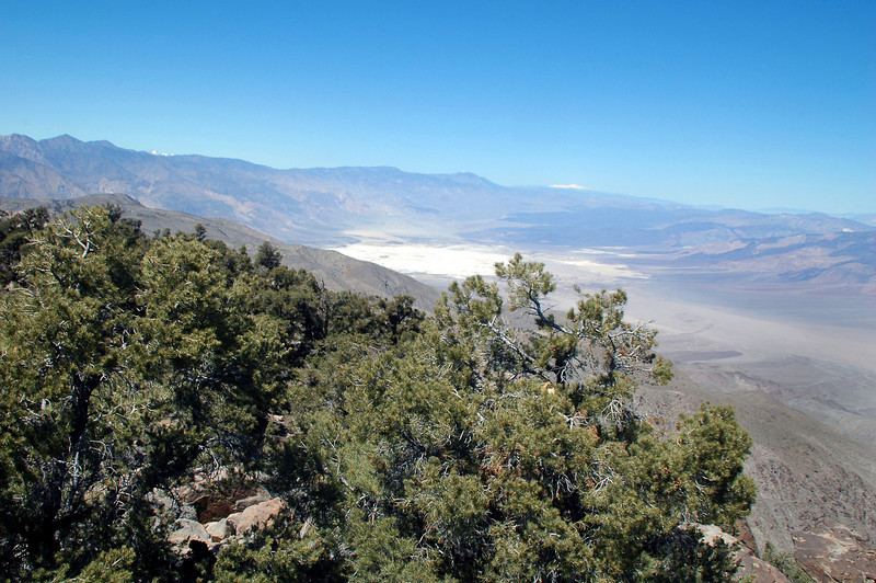 Looking to the northwest down Saline Valley to lake bed.