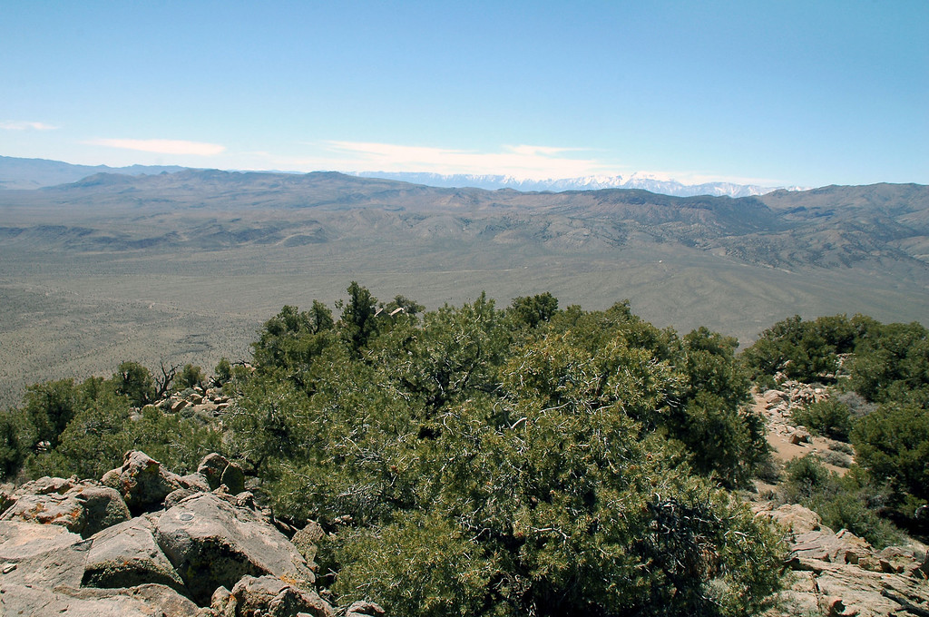 Looking to the southwest across Lee Flat to the Sierras.