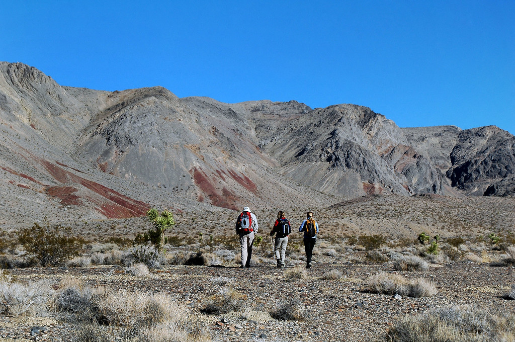 The hike starts off by crossing open desert to reach the mouth of the canyon.