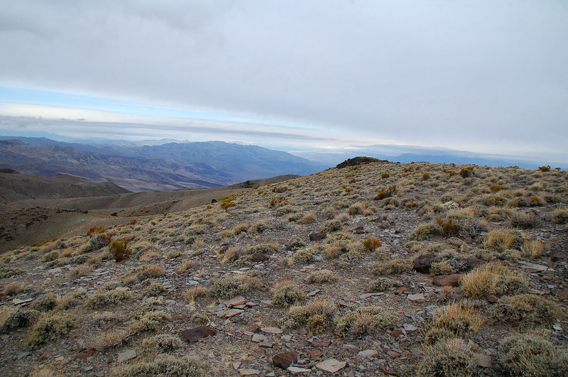 View to the north towards Death Valley.