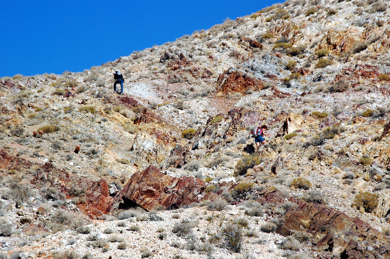 Almost to the saddle on the ridge.