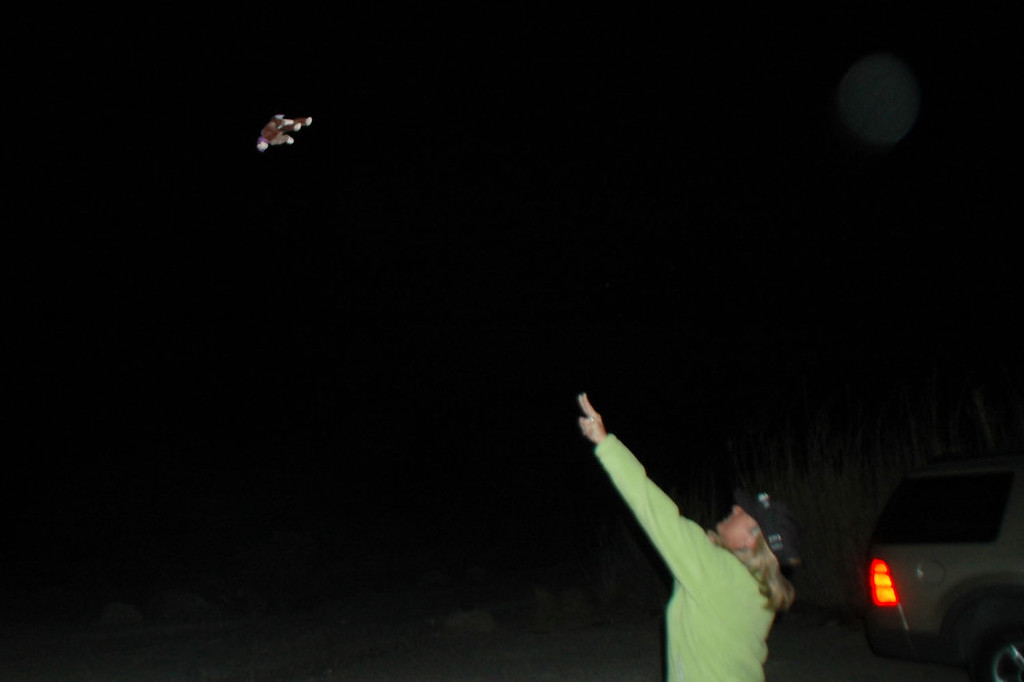 Sooz's new purple monkey makes it's first flight at night.