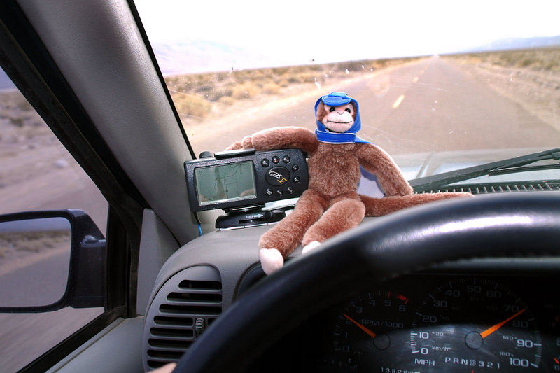 Monkey handled the GPS on the way home, he never gets lost.