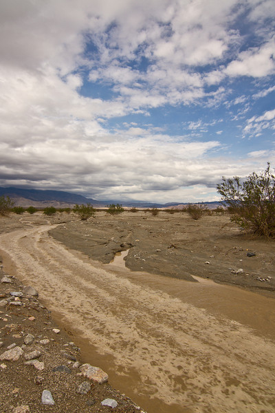 The Waucoba Wash trickle grows to the size of a stream