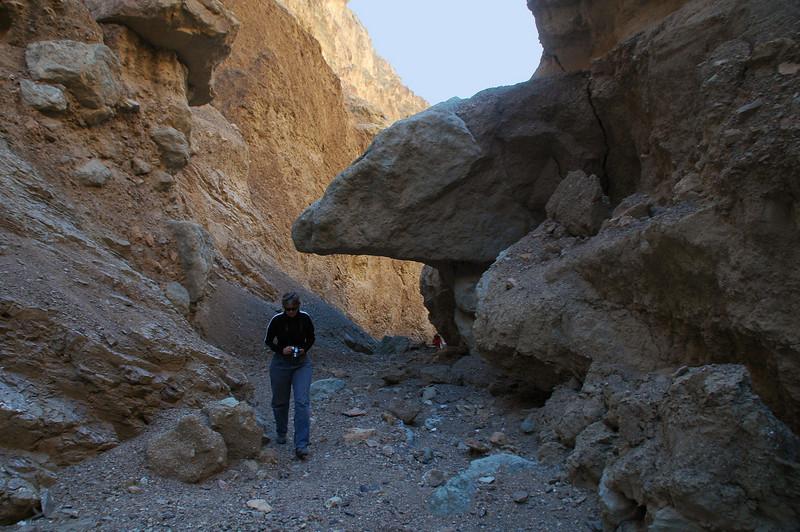 This rock looks like a ram's head.