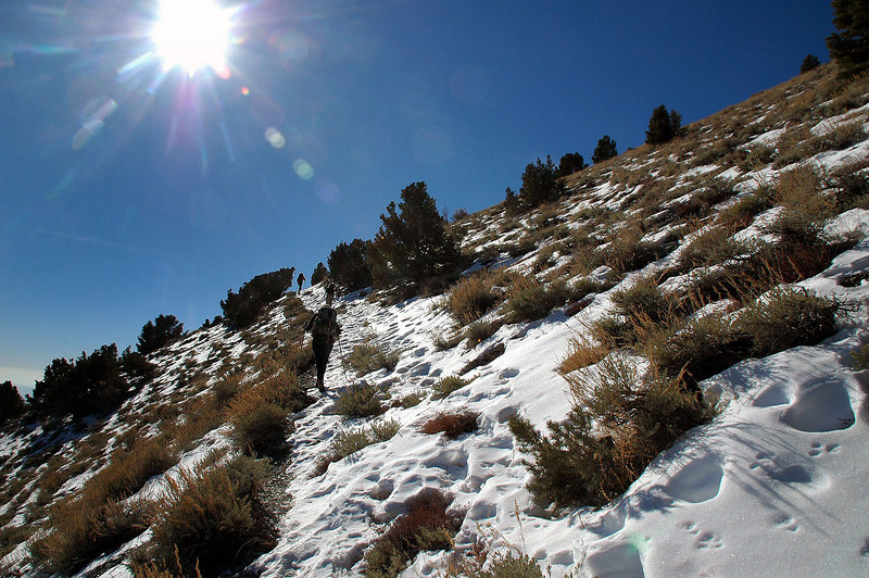 It wasn't long before we came upon snow on the east facing slope.