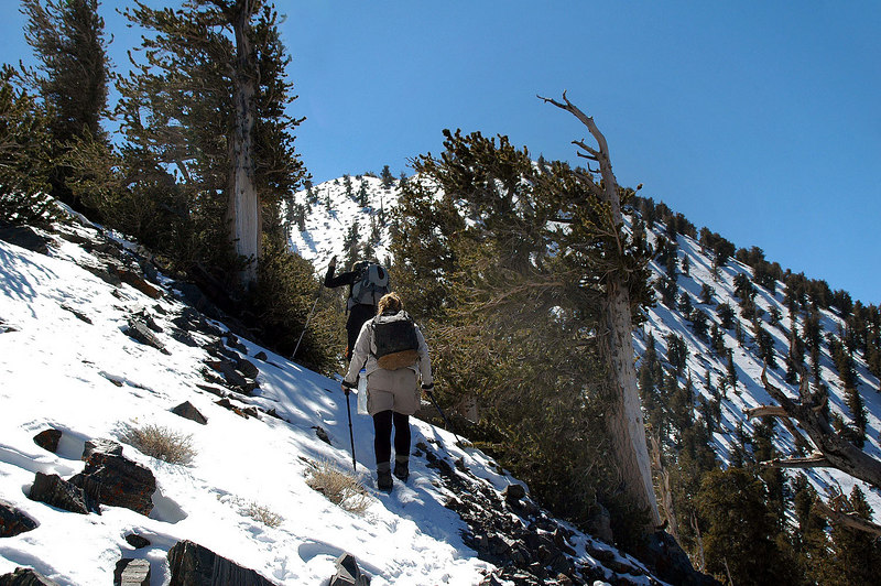 This is where we got into snow at about the 10,000' level.