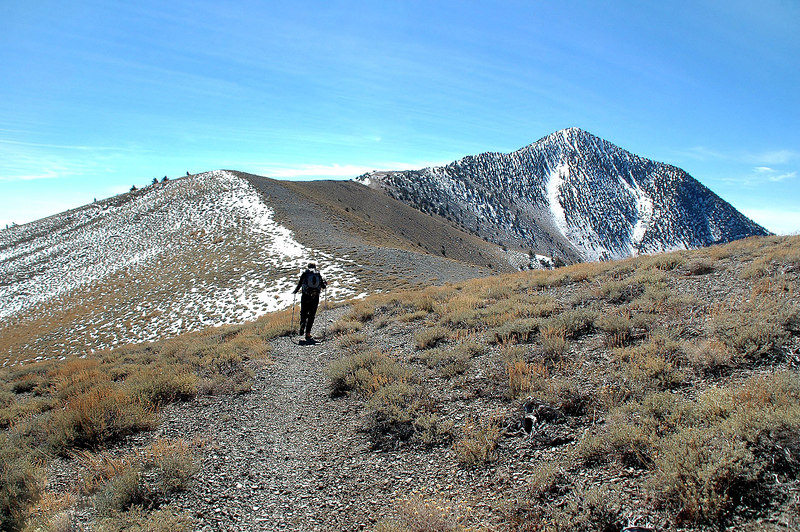 This section of trail between Arcane Meadows and the base of the peak is almost flat.