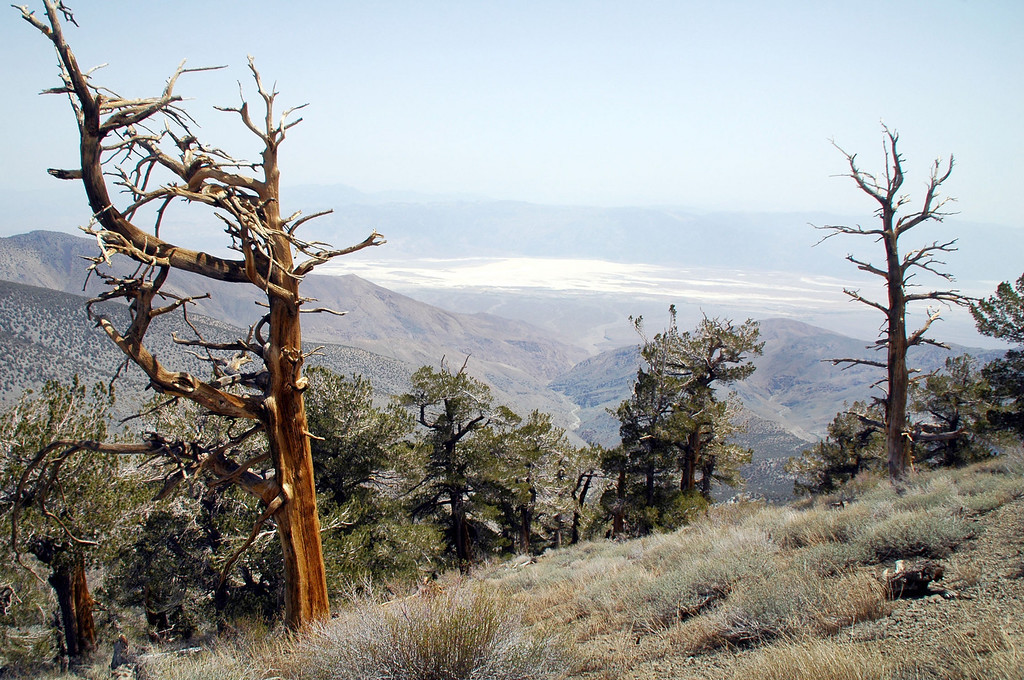 The view into Death Valley got a little better, but still hazy.