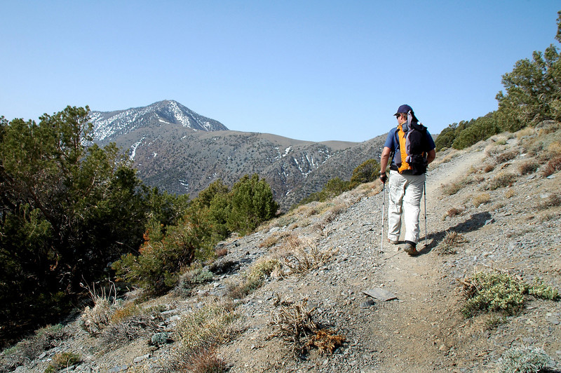 Chip and I stayed on the trail and planned to met them up at Arcane Meadow. This is one of the first views we got of Telescope Peak.
