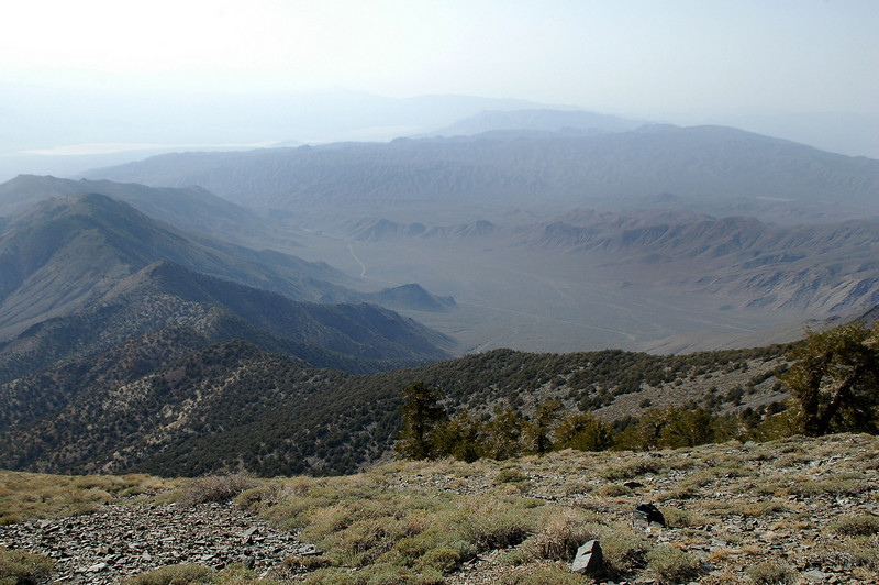 Looking down into Wildrose Canyon from Arcane Meadow.