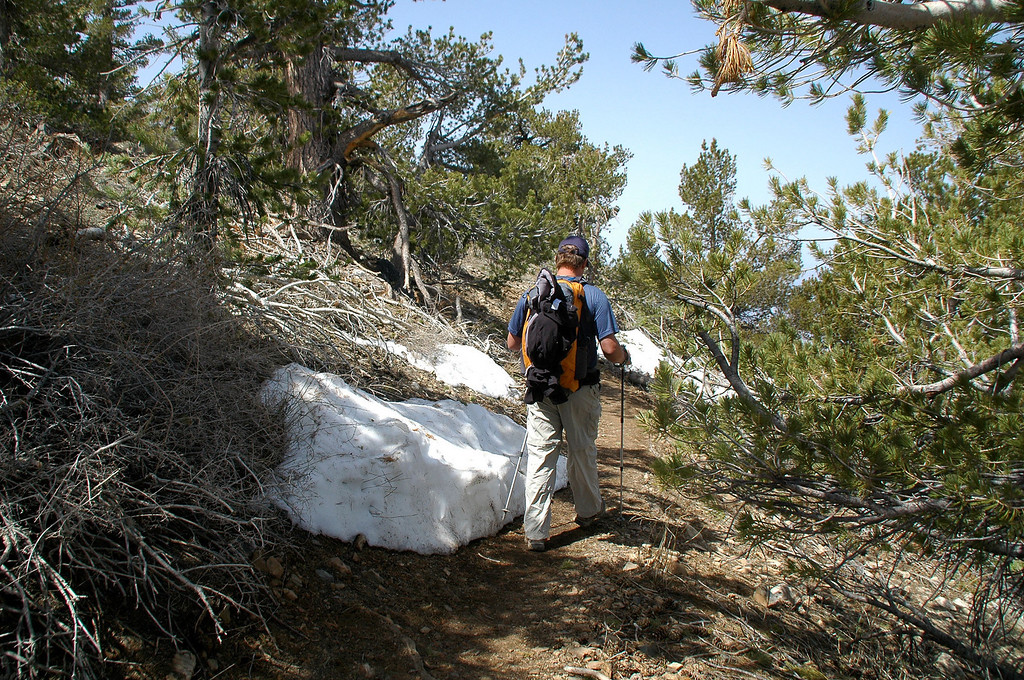 Sooz and Tom left the trail again to hike over the top of Bennet Peak. Chip and I stayed on the trail and are going to meet them further south on the ridge.