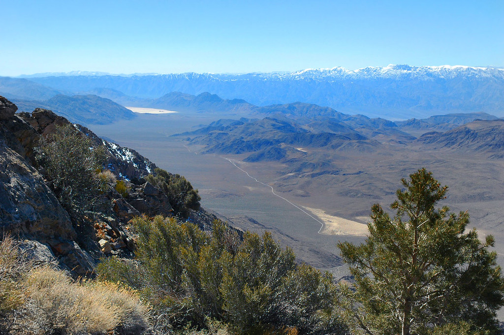 The view from about 8,000'.