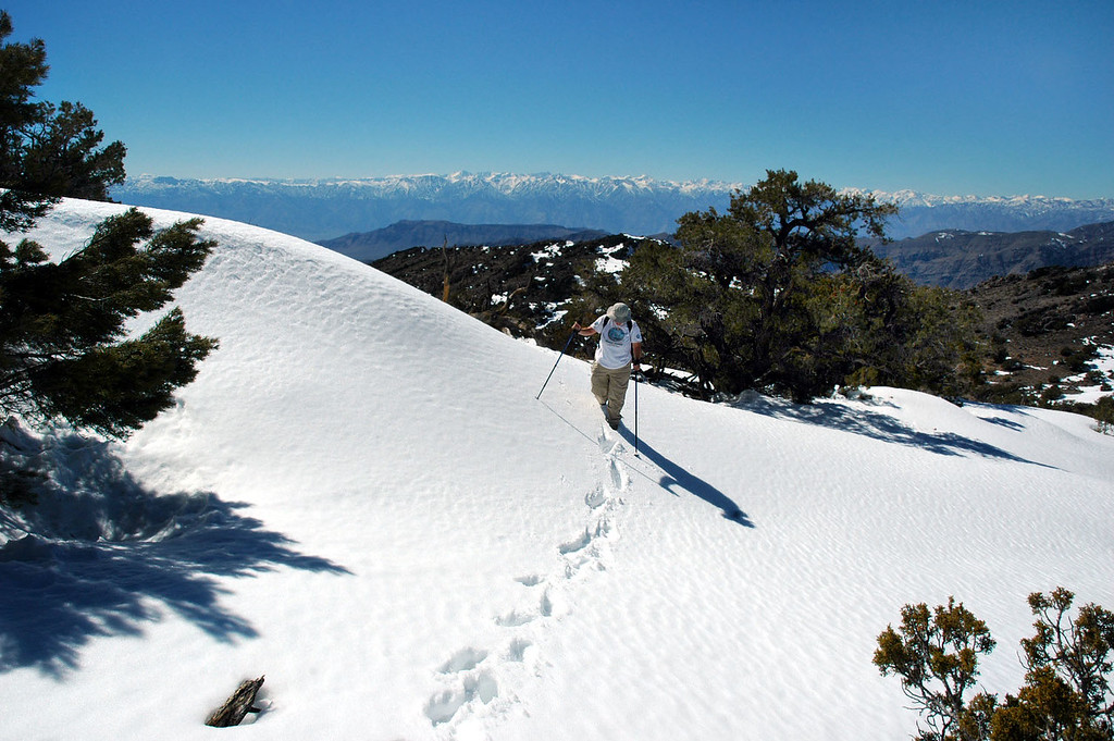 Alison following our tracks to the summit.