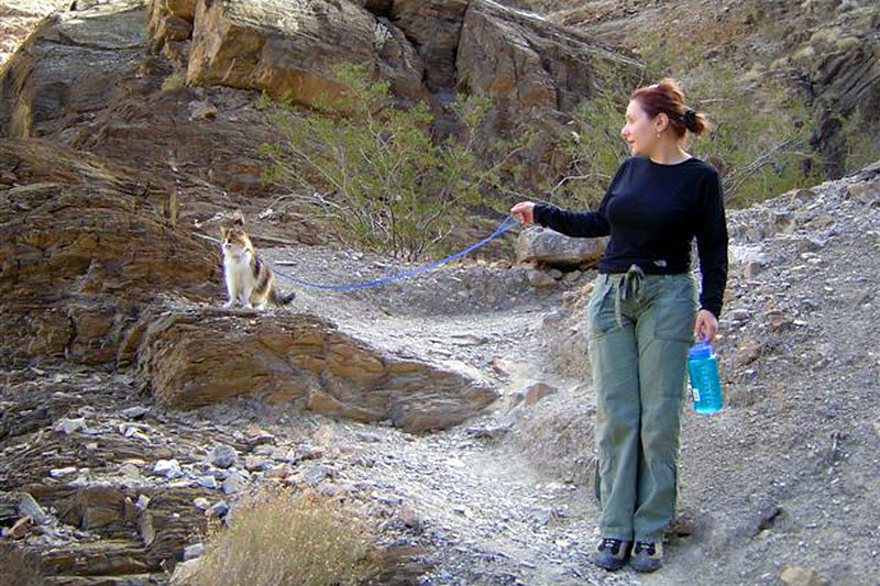 Glen emailed me these next two photos of their cat. Isadora the hiking kitty in Mosic Canyon.
