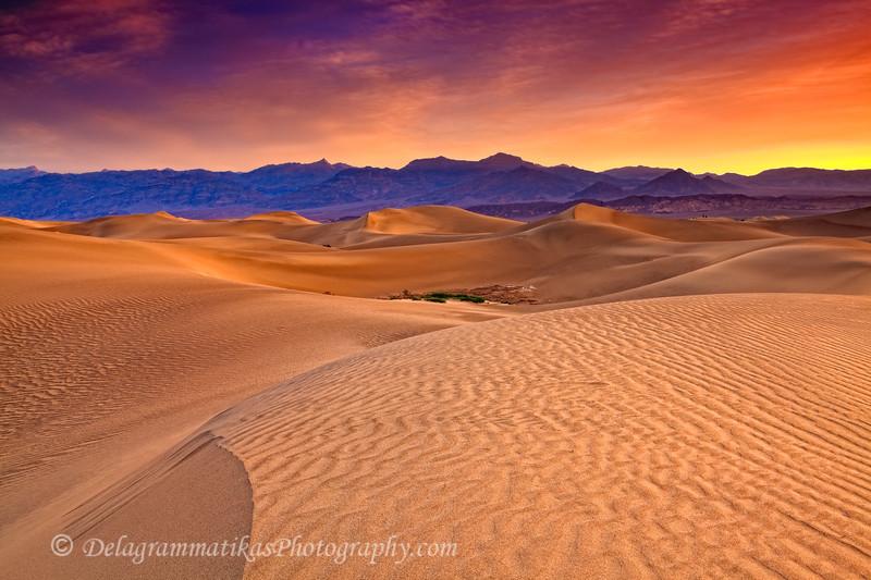 20110413_Death Valley_0209