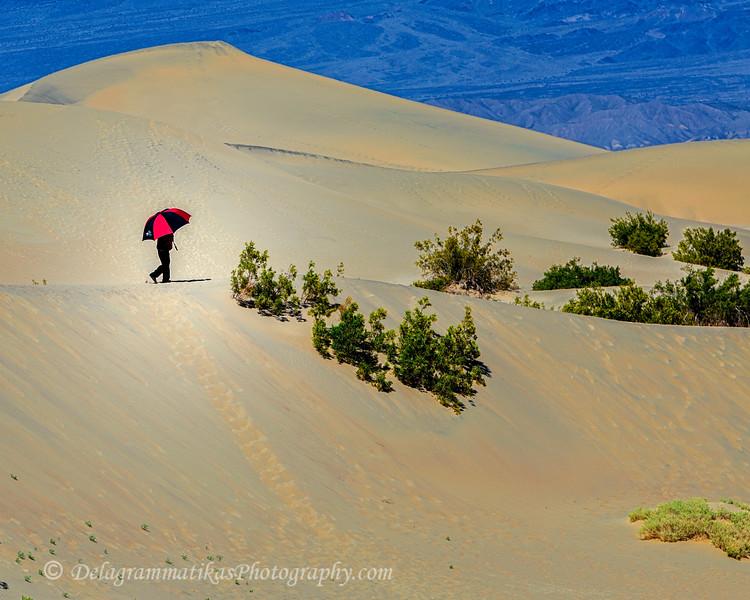 20100410_Death Valley_0565