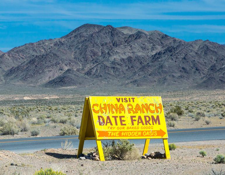 Date Farm near Death Valley