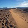 Mesquite Flat Sand Dunes-Death Valley