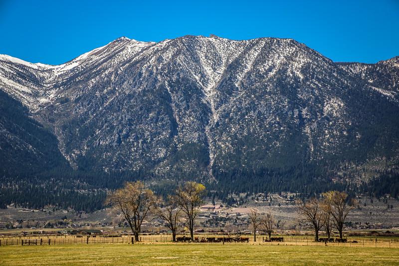 Eastern slope of Sierra Nevada