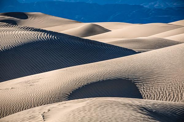 Shadows - Mesquite Dunes