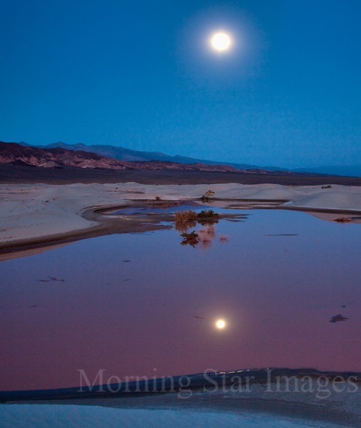 Moonrise & Pond