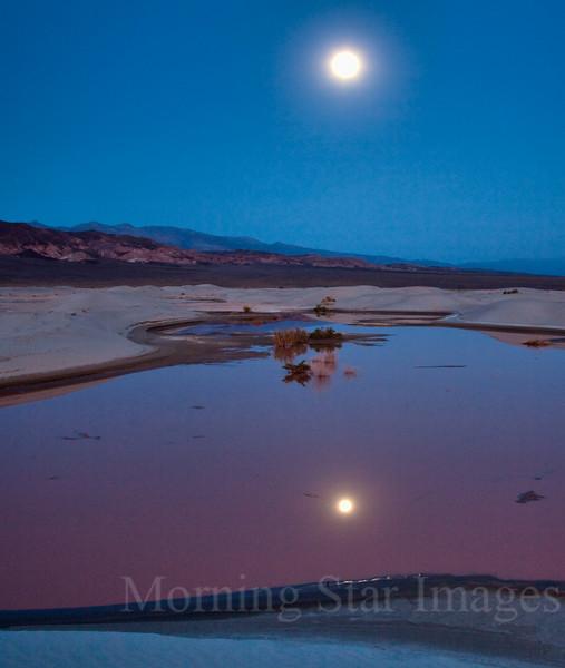 Moonrise & Pond