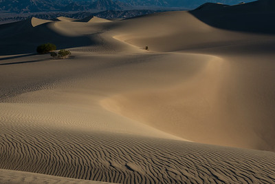 Sand Dunes stretch towards infinity, at Death Valley National Park, California