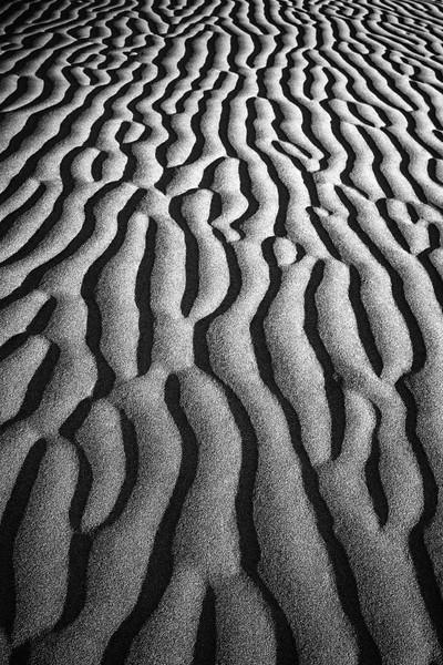 Sand Dune 9341b
