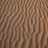 Sand Dunes 9332