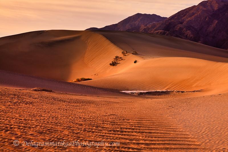 20110413_Death Valley_0231