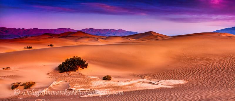 20110413_Death Valley_0201