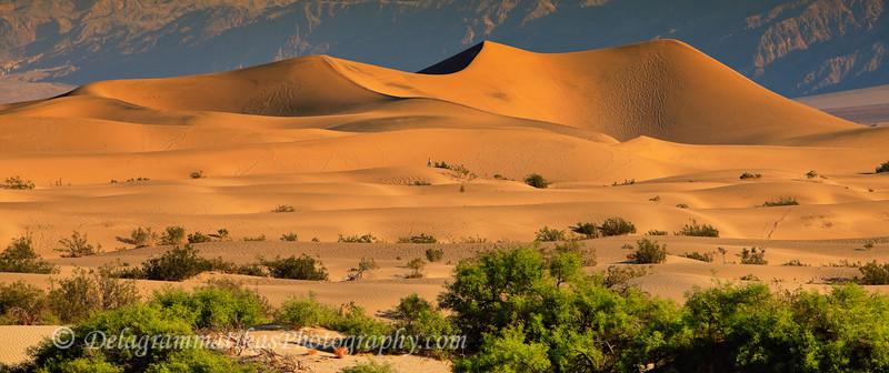 20110413_Death Valley_0255