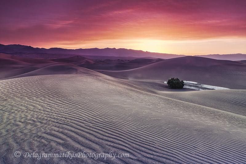 20110413_Death Valley_0202