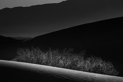 Mesquite dunes sunrise