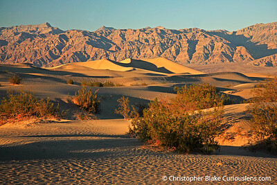 Sand Dunes and Shadows 2