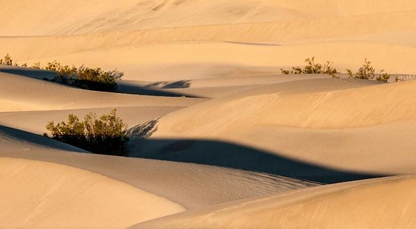 Death Valley Dunes 2012