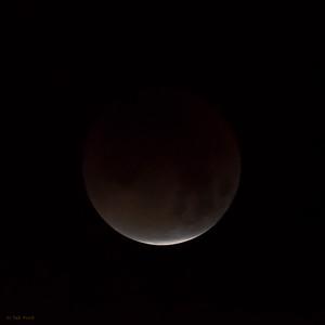 Lunar Eclipse: 4:49 am