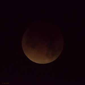 Lunar Eclipse: 5:08am