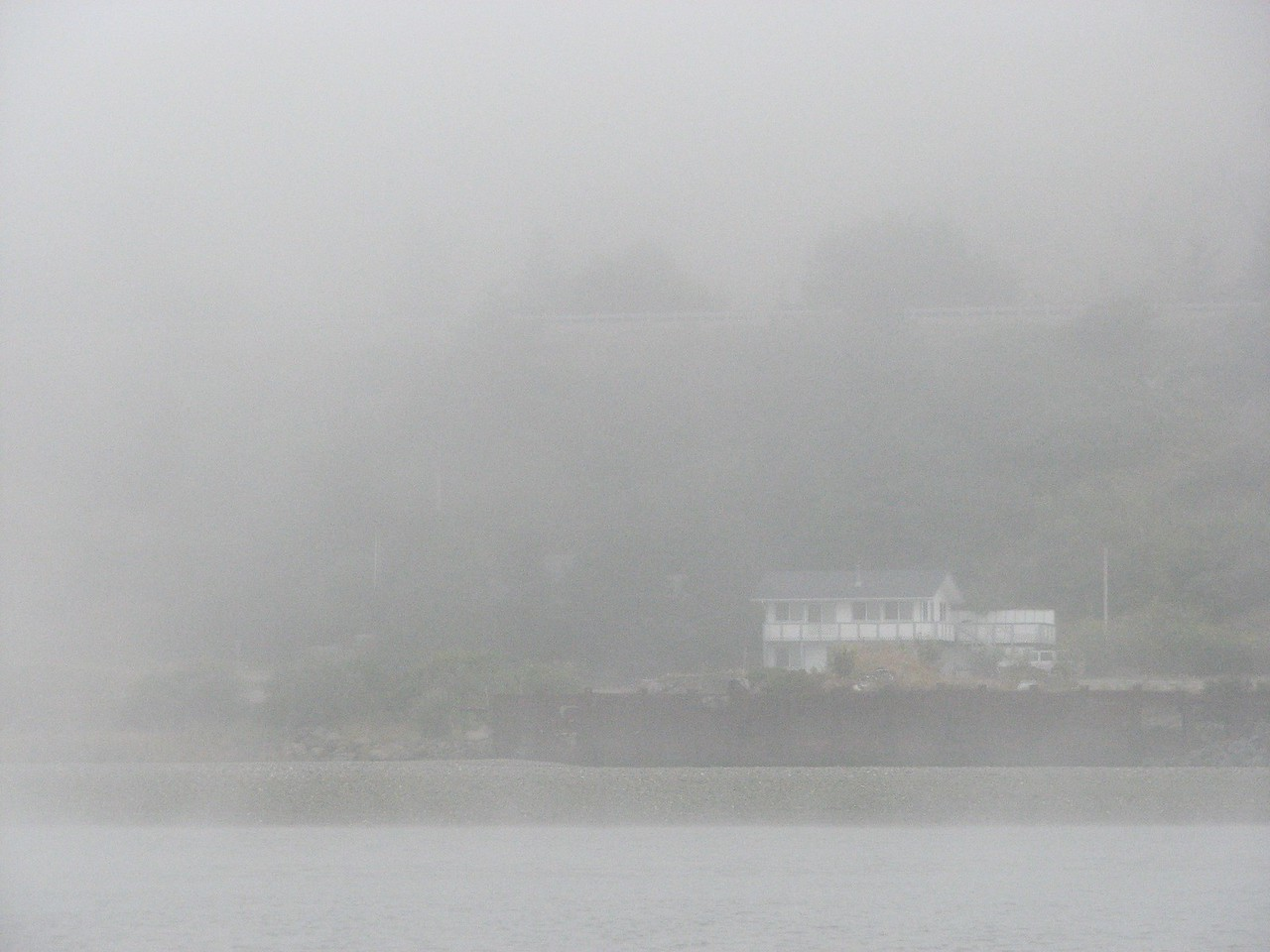 Fog as we leave the docks.