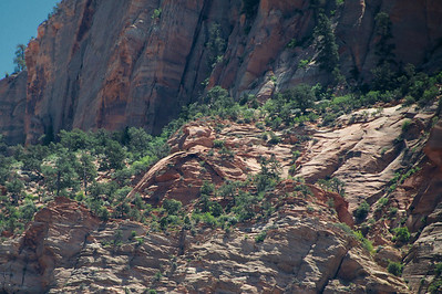 A natural bridge waaaay up on a cliff ledge (Zion)