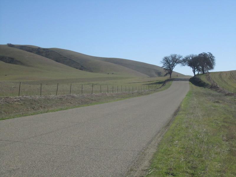 Cholame Hills